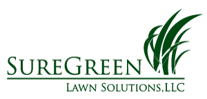 Maryland lawn care & pest control services